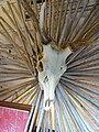 Deer Skull Arrangement in Clothing Store Window - Heiwa Street - Asahikawa - Hokkaido - Japan (48018085121).jpg