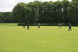 Cricketspelers in Quelderduyn.