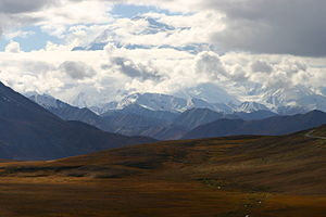 Denali National Park and Preserve AK2006-0346.jpg
