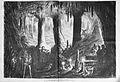 Die Gartenlaube (1869) b 140.jpg