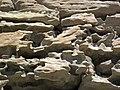 Differentially cemented & eroded sandstone (member C, Uinta Formation, Eocene; Fantasy Canyon, Utah, USA) 3 (24549004410).jpg