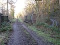 Dismantled railway line - now part of 'The Jack Mytton Way' - through Easthope Wood. - geograph.org.uk - 653452.jpg