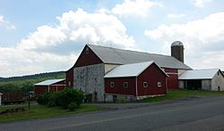Farm in Landis Store, District Township