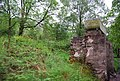 Disused Water Tank at Fisherground, Ravenglass and Eskdale Railway - geograph.org.uk - 1337332.jpg