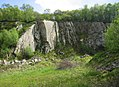 Disused quarry at Poles Coppice, Pontesbury (geograph 2956014).jpg