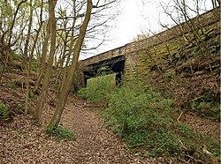 Disused rail bridge - geograph.org.uk - 786920.jpg