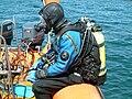 Diving - scubadiver.JPG