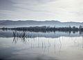 Dojran Lake 220.jpg