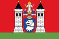 Dolní Žandov vlajka.png