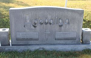 Domingo Arechiga - Arechiga gravestone at Calvary Catholic Cemetery in Laredo, Texas