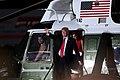 Donald Trump & Martha McSally (44529975695).jpg