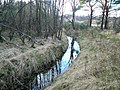 Drainage ditch - geograph.org.uk - 371907.jpg