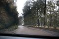 Driving in the rain, Funchal - Nov 2010 - 06.jpg