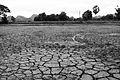 Dry grounds, landscape in Kanchanaburi.jpg
