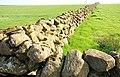 Drystone walls near Martinstown - geograph.org.uk - 1234037.jpg