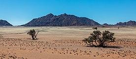 Duna Elim, Sossusvlei, Namibia, 2018-08-06, DD 163.jpg