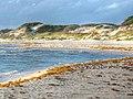 Dunes - St Joseph Pennsula - panoramio (1).jpg