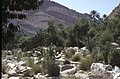 Dunst Oman scan0150 - Rückweg.jpg