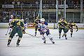 Edmonton Oilers Rookies vs UofA Golden Bears (15088768788).jpg