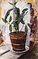 Edvard Munch - Potted Plant on the Windowsill.jpg