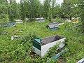 Eklutna Village - Cemetery 04.jpg