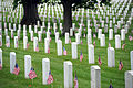Events at Arlington National Cemetery 130527-G-ZX620-040.jpg
