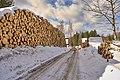 Eventyrskogen etter 3-km på Øverby hogget og lagt i tømmerlunne.jpg