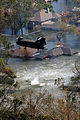 FEMA - 17759 - Photograph by Jocelyn Augustino taken on 09-07-2005 in Louisiana.jpg
