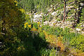 Fall in East Clear Creek (3985402928).jpg