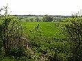 Farmland around Eddeneshill Barn - geograph.org.uk - 449195.jpg
