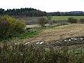 Farmland near Park Head Farm, Netherwitton - geograph.org.uk - 1043386.jpg