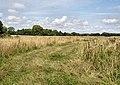 Farmland north of Shelter Belt - geograph.org.uk - 1431660.jpg