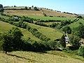 Farms near Bwlchyddar - geograph.org.uk - 205817.jpg