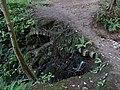 Ffynnon St Dyfnog - St Dyfnog's Well, Llanrhaeadr, Denbighshire, Wales 19.jpg