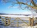 Field Entrance Near Mains Of Burnbank - geograph.org.uk - 1636414.jpg