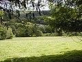 Field Near Storey House farm - geograph.org.uk - 537203.jpg