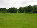 Field near Glazier's Forge - geograph.org.uk - 505864.jpg