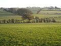 Fields Near Polnoon - geograph.org.uk - 1102688.jpg