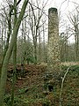 Findall Chimney - Forest of Dean - geograph.org.uk - 1024177.jpg