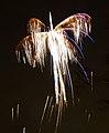 Firework 4a (8152375821).jpg