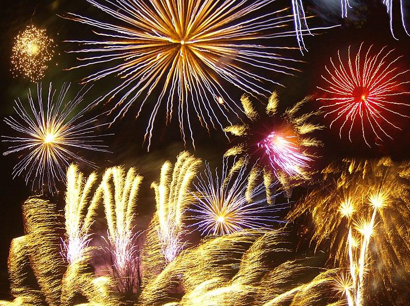 В этом году новогодние фейерверки в Нидерландах будут запрещены