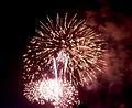 Fireworks in Tamagawa 2009 3.jpg