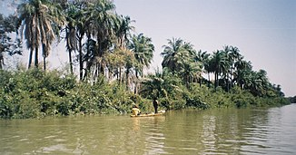 Fischer-Boot am Gambia-Fluss bei Janjanbureh Island
