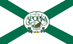 Flag of Apopka, Florida.png