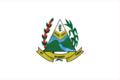 Flag of Desterro do Melo MG.png