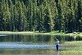 Flyfishing at Anthony Lakes, Wallowa-Whitman National Forest (23266977174).jpg