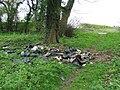 Flytipped car parts - geograph.org.uk - 778201.jpg