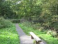 Footbridge in Holywell Dene Northumberland - geograph.org.uk - 1531358.jpg