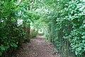 Footpath alongside Orchard Business Park - geograph.org.uk - 1356416.jpg
