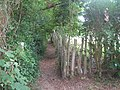 Footpath from Brenchley Church - geograph.org.uk - 1436149.jpg